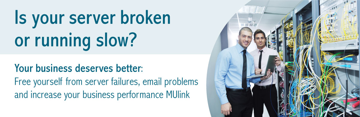 Is your server broken or running slow? Your business servers better: Free yourself from server failurs, email problems and increase your business performance Mulink